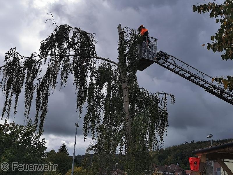 Hilfeleistung Baumsperre